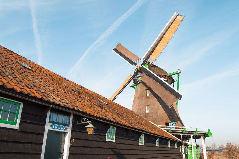 Visita a los molinos de Zaanse Schans: Qué ver y cómo llegar