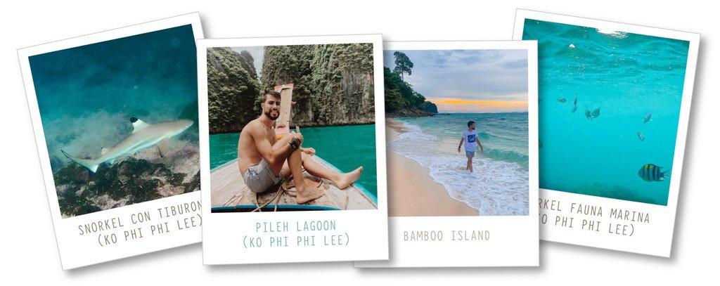 Excursión Phi Phi Islands día 9. Qué ver en Tailandia en 15 días
