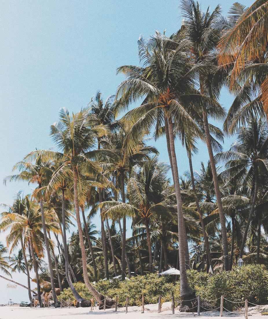 Cómo llegar y dónde alojarse en Koh Phi Phi - Loh Ba Kao