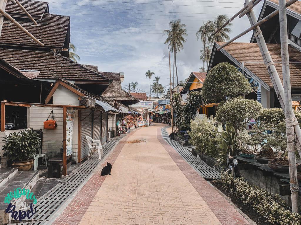 Tonsai: Cómo llegar y dónde alojarse en Koh Phi Phi