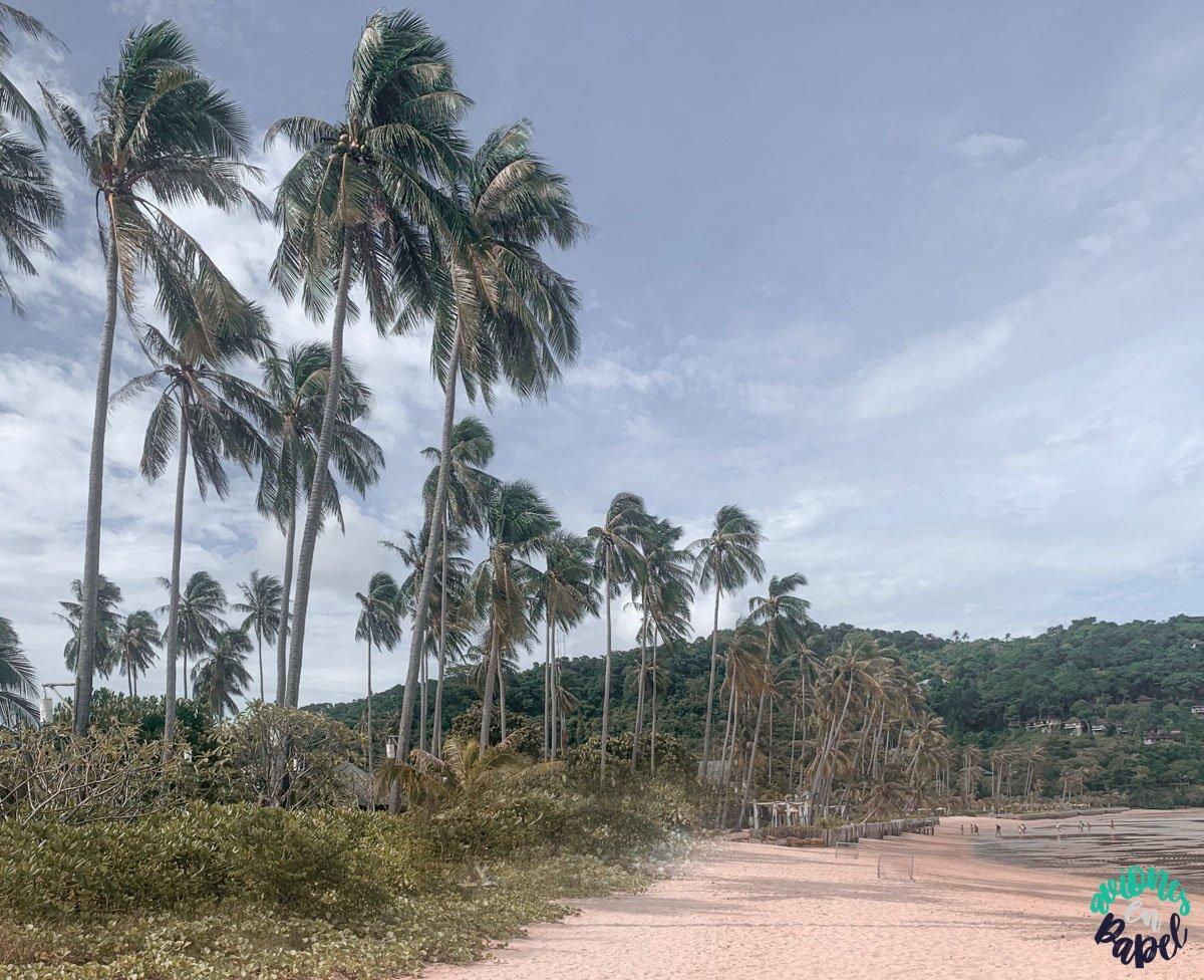 Loh Moo Dee Beach: Islas Phi Phi en 3 días