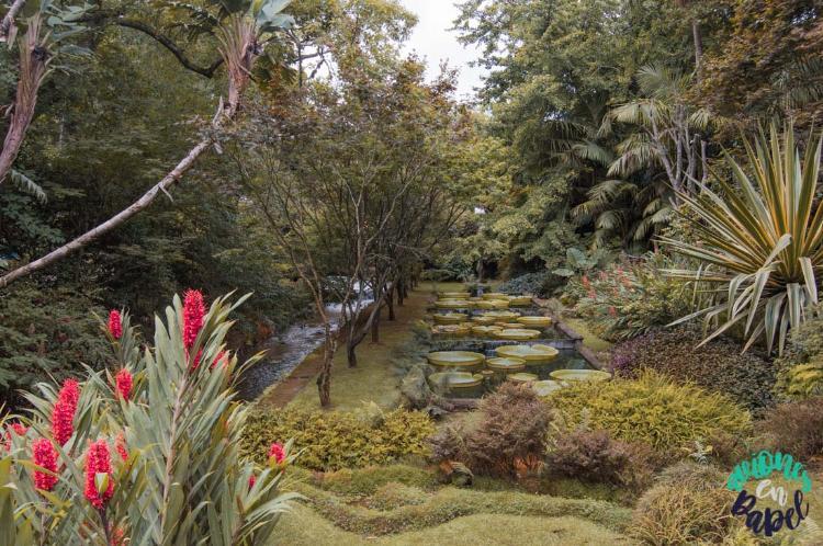 Parque botánico Terra Nostra Park, Sao Miguel en 7 días