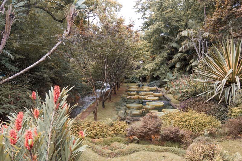 Qué ver y hacer en Furnas: Parque Terra Nostra